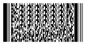 2-Dimensional Symbol PDF417 Barcodes